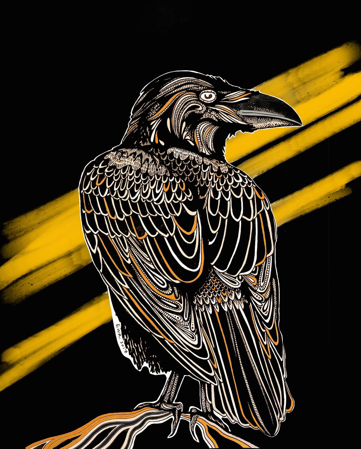 desert raven design