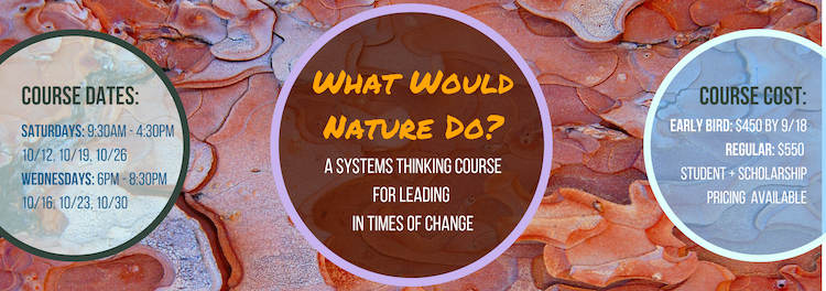 What Would Nature Do_ (8).png