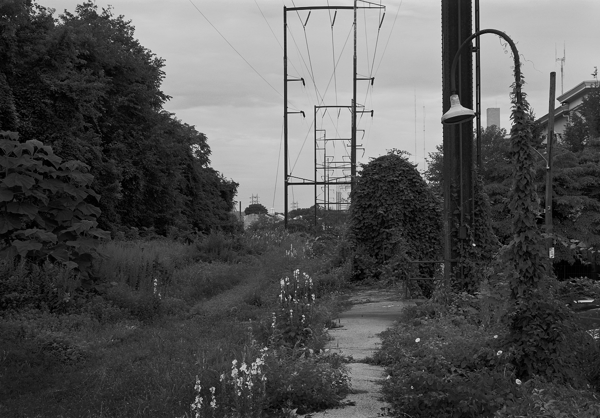 View of Mainline Looking North from from abandoned Platform.