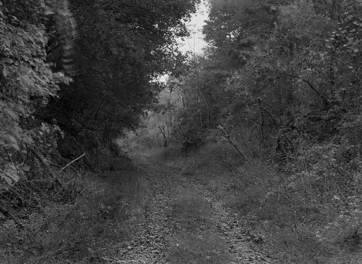 Original alignment of the Northern Central Railway just south of the junction and crossing of the Cumberland Valley.
