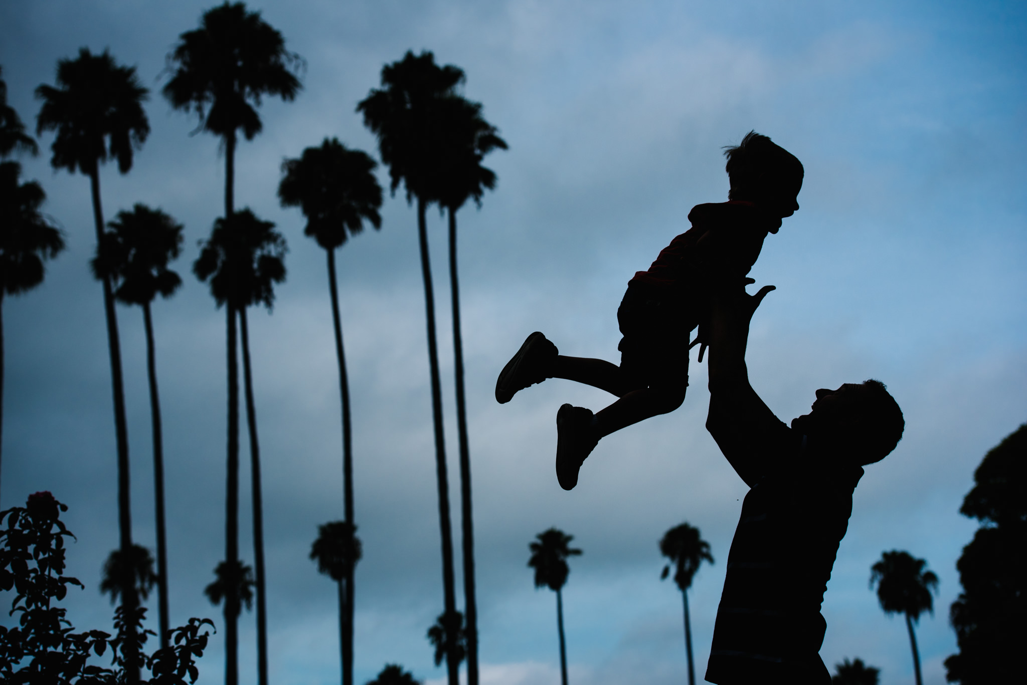 Silhouette of dad son palm trees