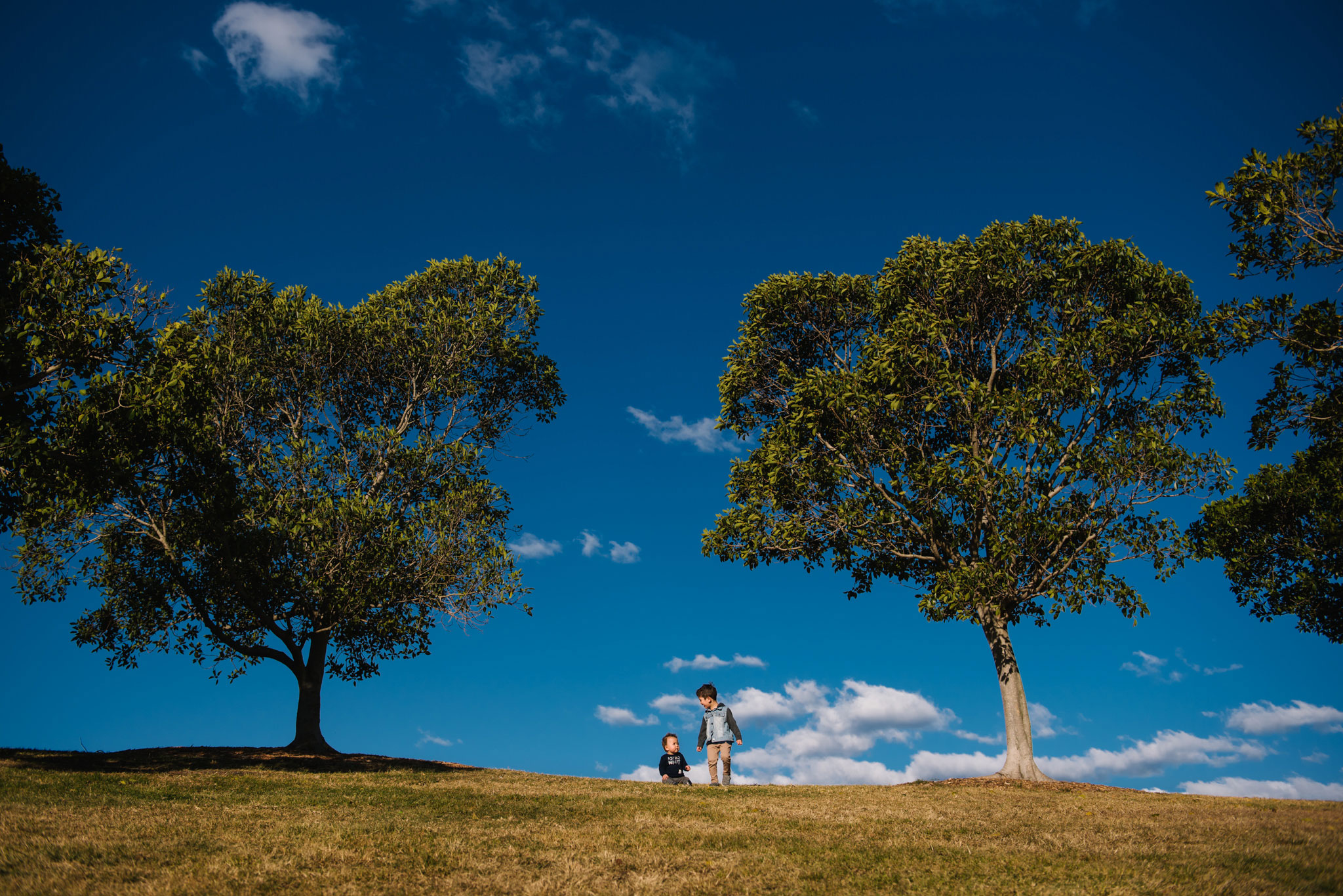Brothers in Sydney Park