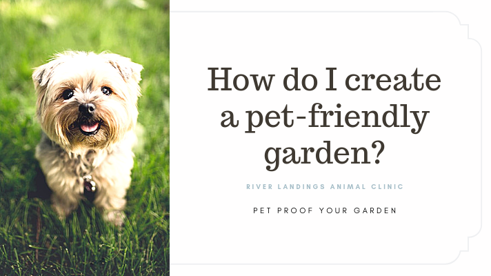 blog_ Pet Proof Your Yard _banner.png