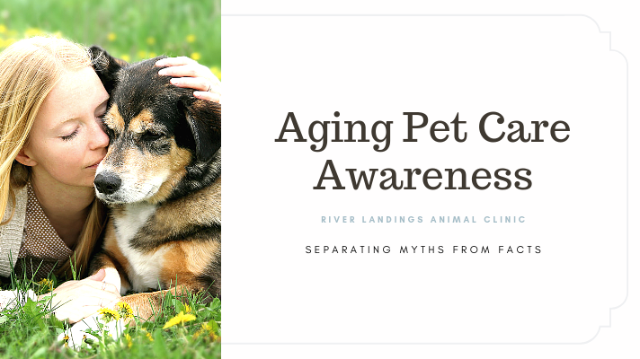 Help your pet live a long healthy life.