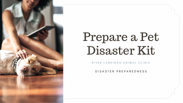 blog_ Prepare a Kit _banner.png