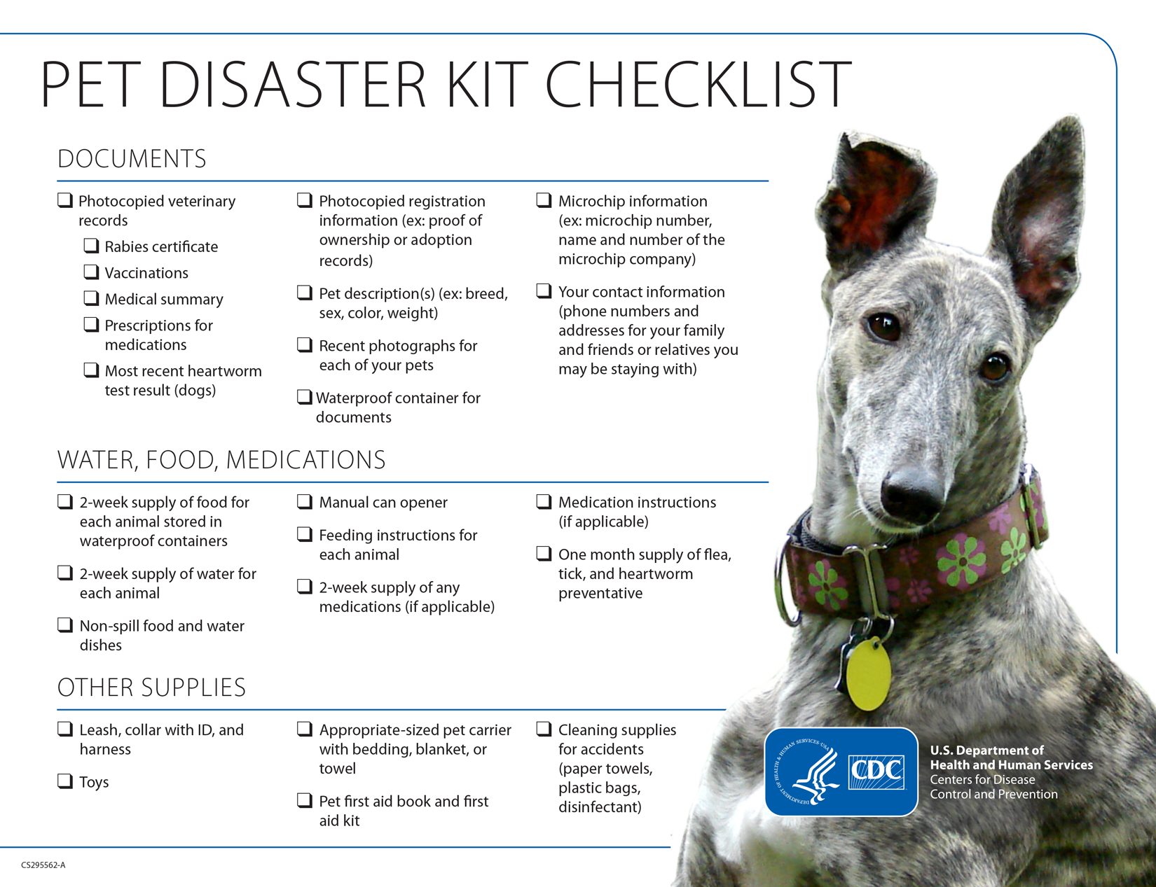 Pet Disaster Kit Checklist for Dogs
