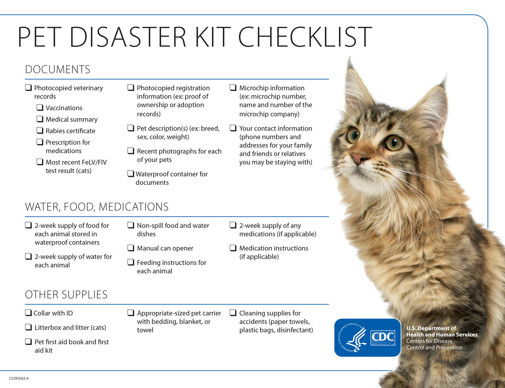 Pet Disaster Kit Checklist for Cats