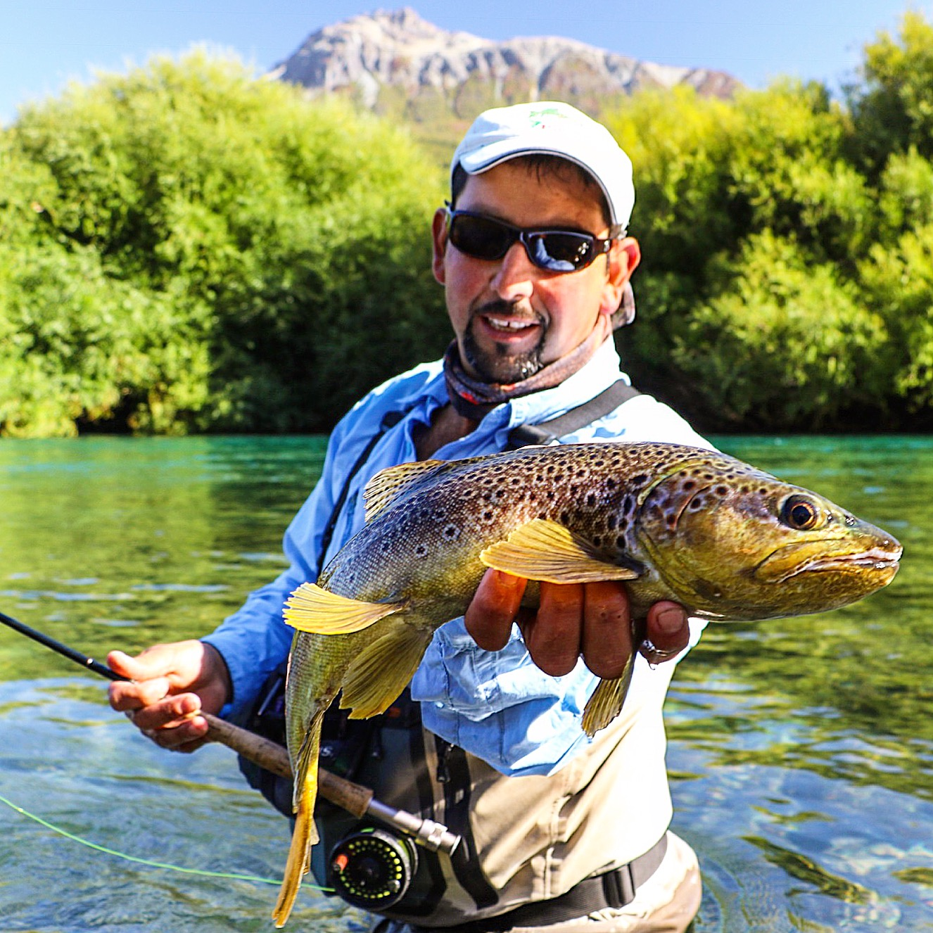 Streamers or dries it all fun on the Futa, this classic big spotted brown came up to the surface and attached a large dry fly being stripped and twitch through a run!