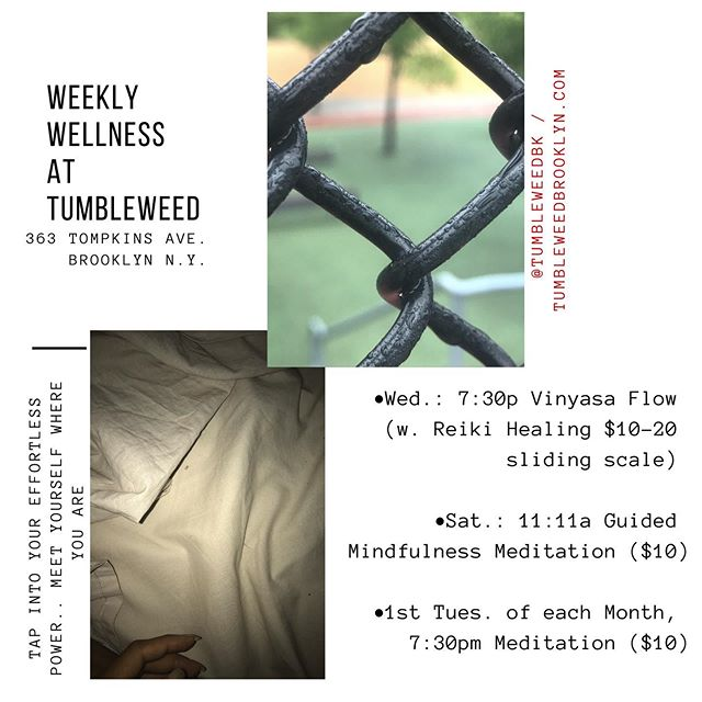 Join us 7:30pm tonight #bedstuybrooklyn , & every Wednesday for #Vinyasa #yoga with @honey.n.sol , featuring #reiki healing ✨ + every Saturday morning 11:11am for #GuidedMeditation with @evamilan.z  ________________________________ *we're looking to schedule in more Yoga teachers, as well as more weekly/bi-weekly/monthly #programming ; more #wellness, #arts, #community and #kidsactivities. If you know anyone interested please DM us 💛🤸🏽‍♀️🌄