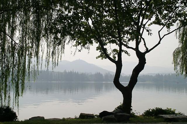 china-1013614_640.jpg