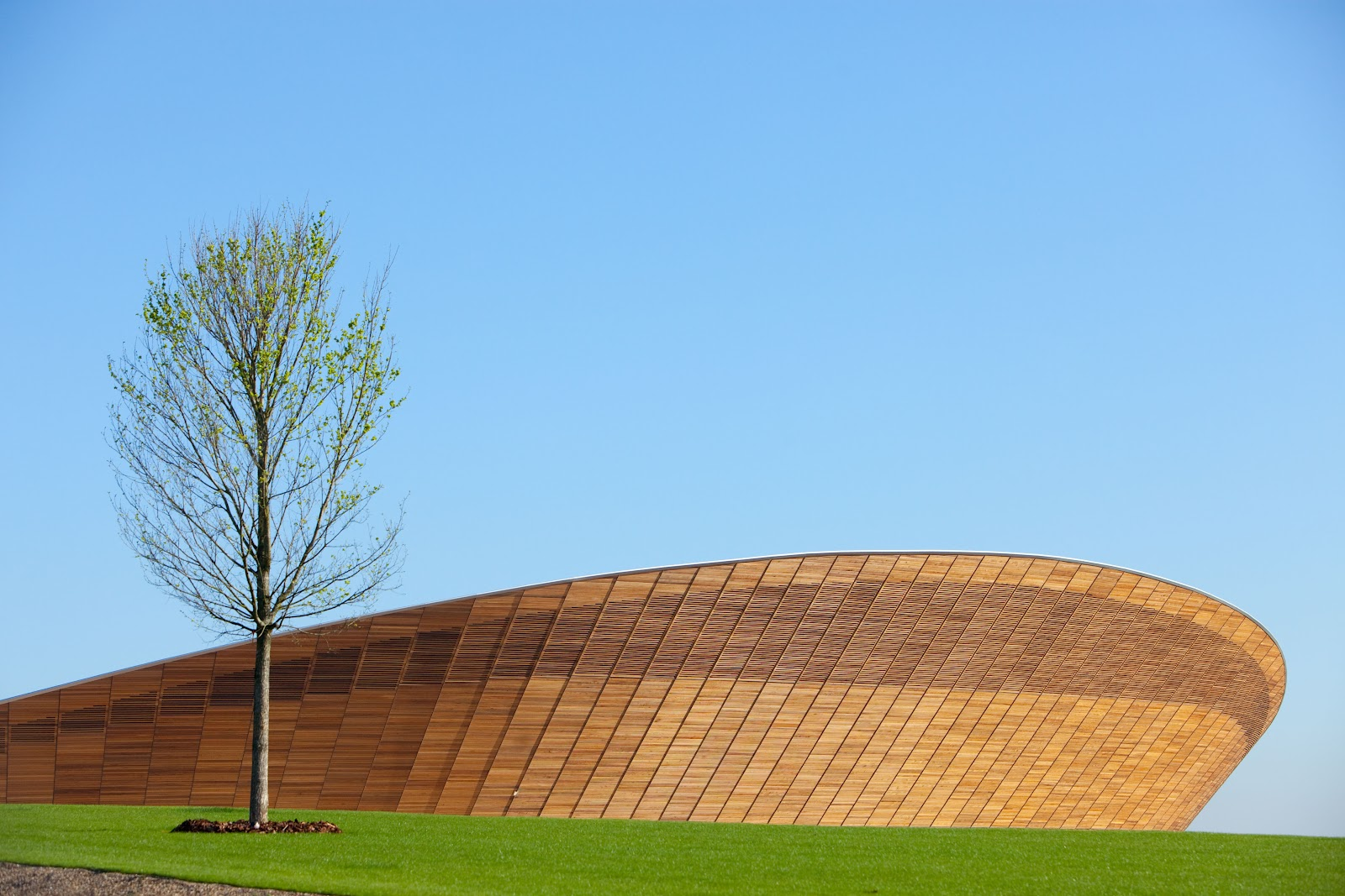 London 2012 velodrome -- hopkins architects.jpg