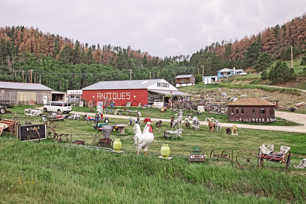 In the Black Hills, South Dakota 2013