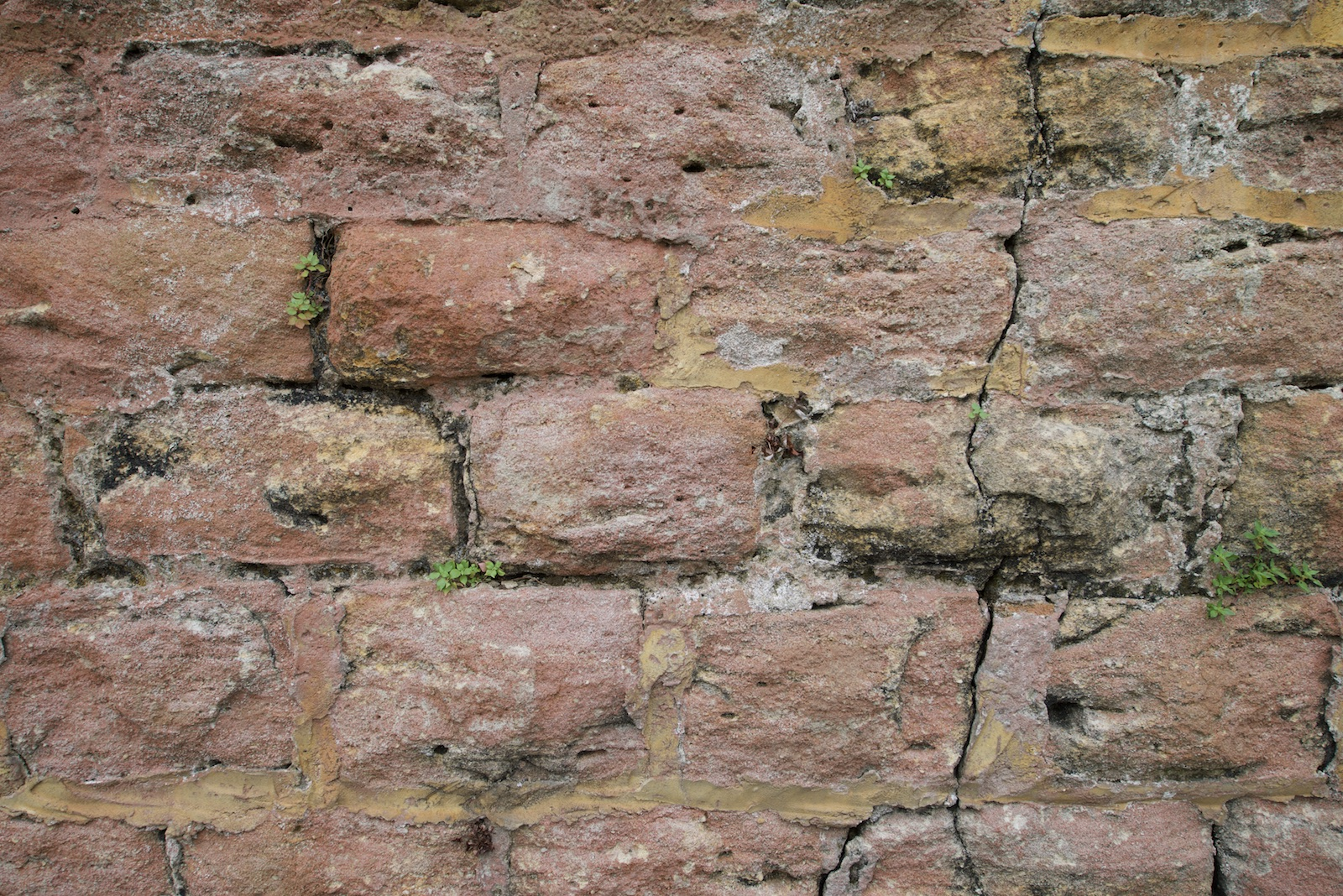 2015-0012-0193. Stone wall, Sydney, Australia.