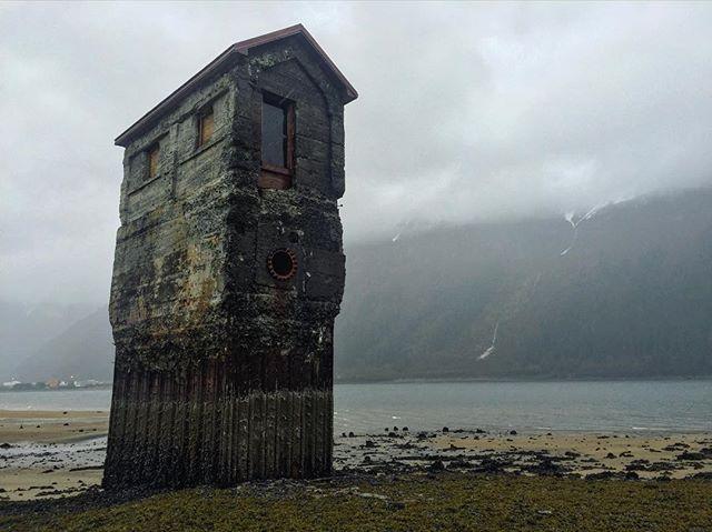 Thinking of that Alaskan real estate; Good backyard