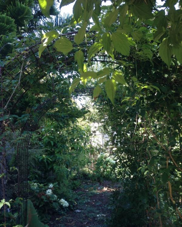 The garden of Max Gill.