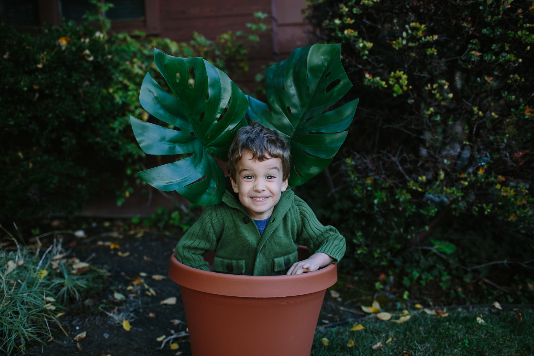 the-curiosity-project-blog-halloween-plant-lady-costumes (4 of 13).jpg