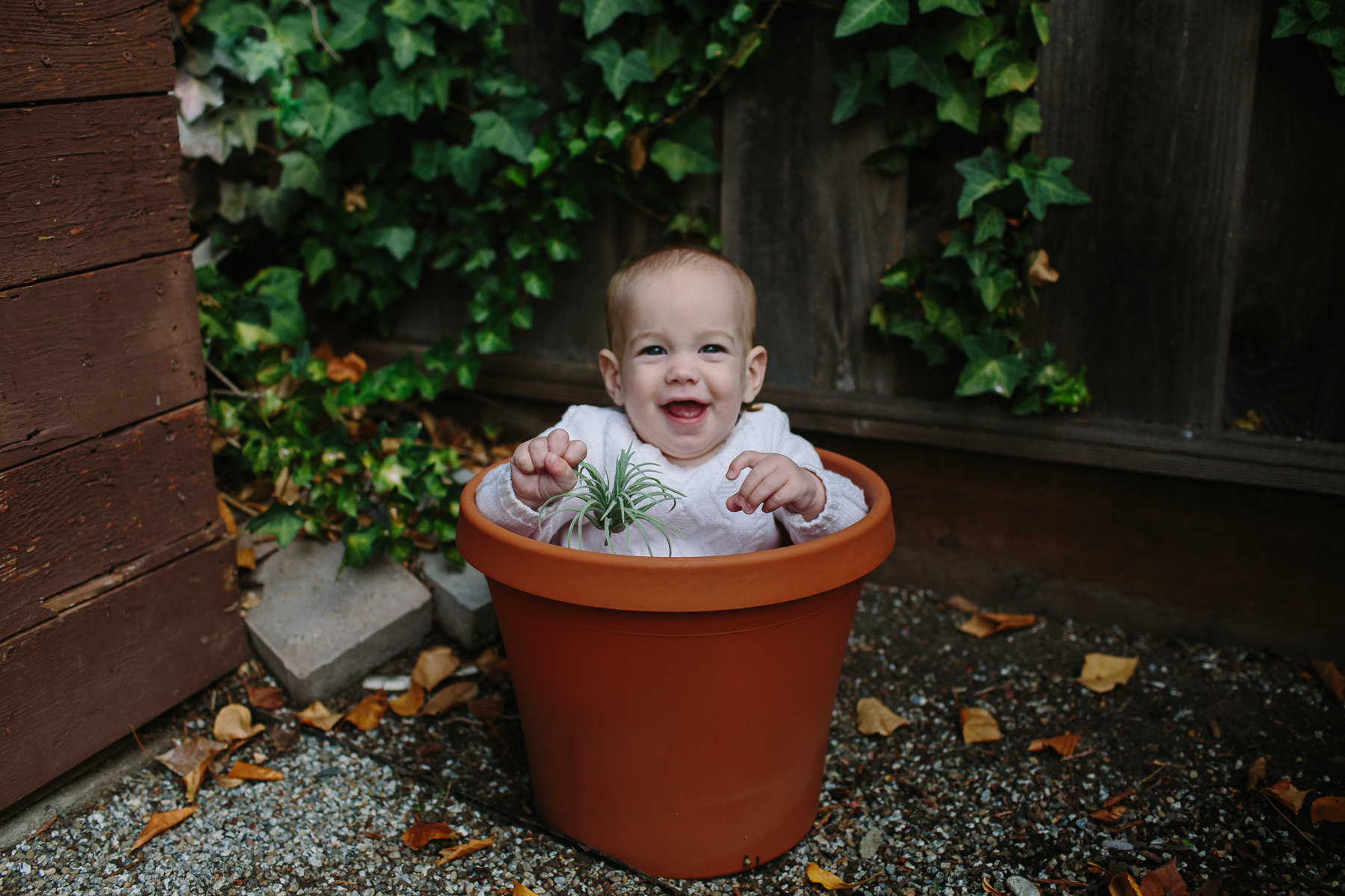 the-curiosity-project-blog-halloween-plant-lady-costumes (1 of 13).jpg