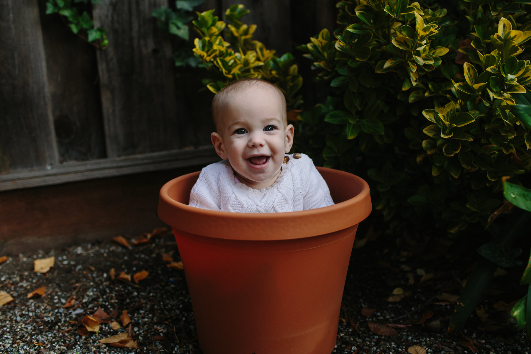 the-curiosity-project-blog-halloween-plant-lady-costumes (2 of 13).jpg