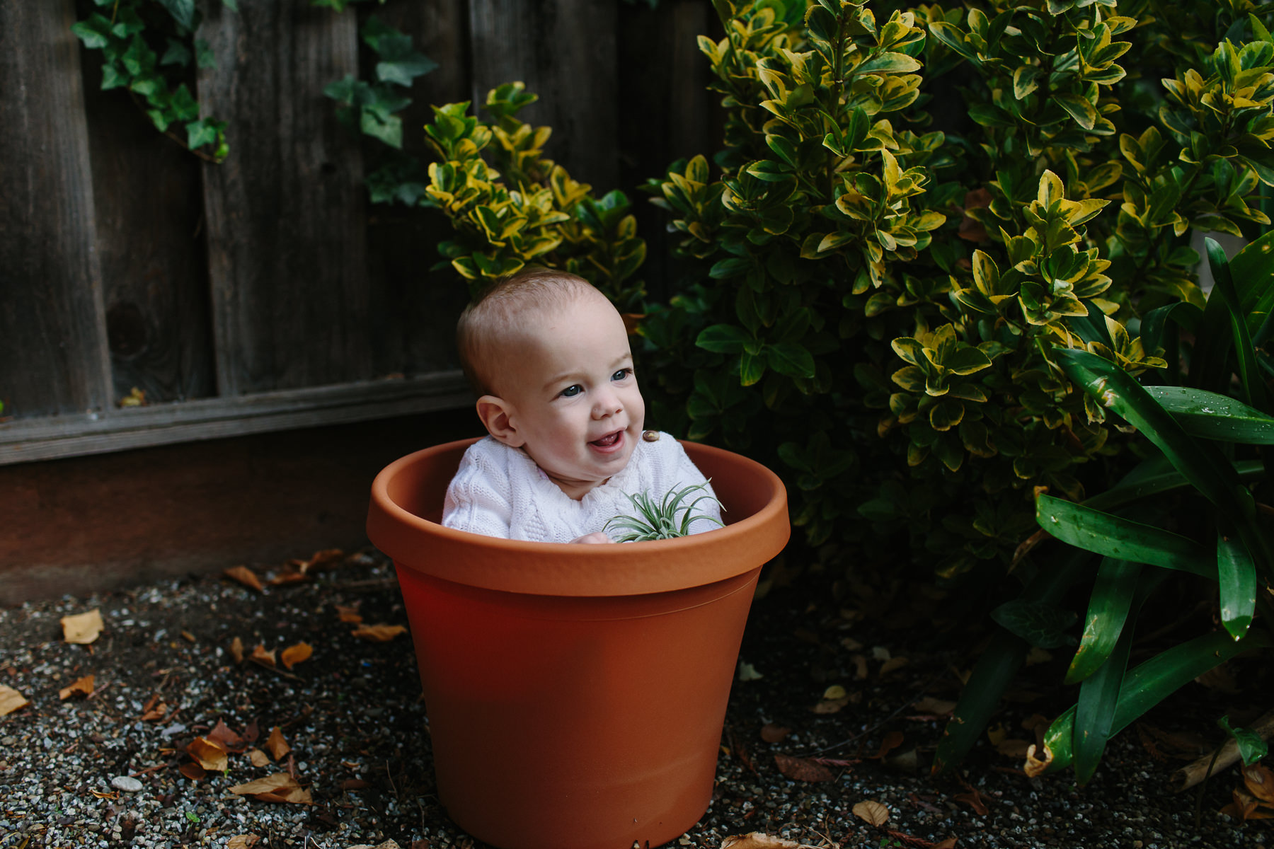 the-curiosity-project-blog-halloween-plant-lady-costumes (3 of 13).jpg