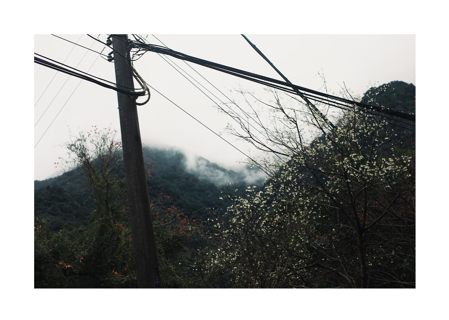 Wulai_Wellness_Diary_03.jpg