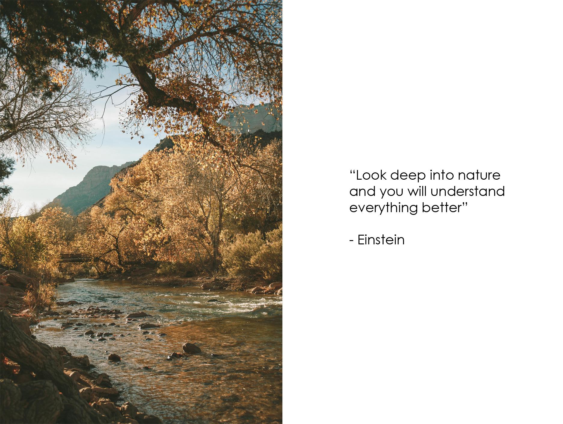 SOUTHWEST_Nature_Quote_KristineLo.jpg