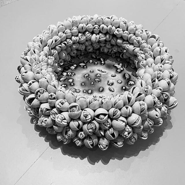 #heidemuseumofmodernart #anideaneedingtobemade #katemaloneceramics Snapdragon seed bank