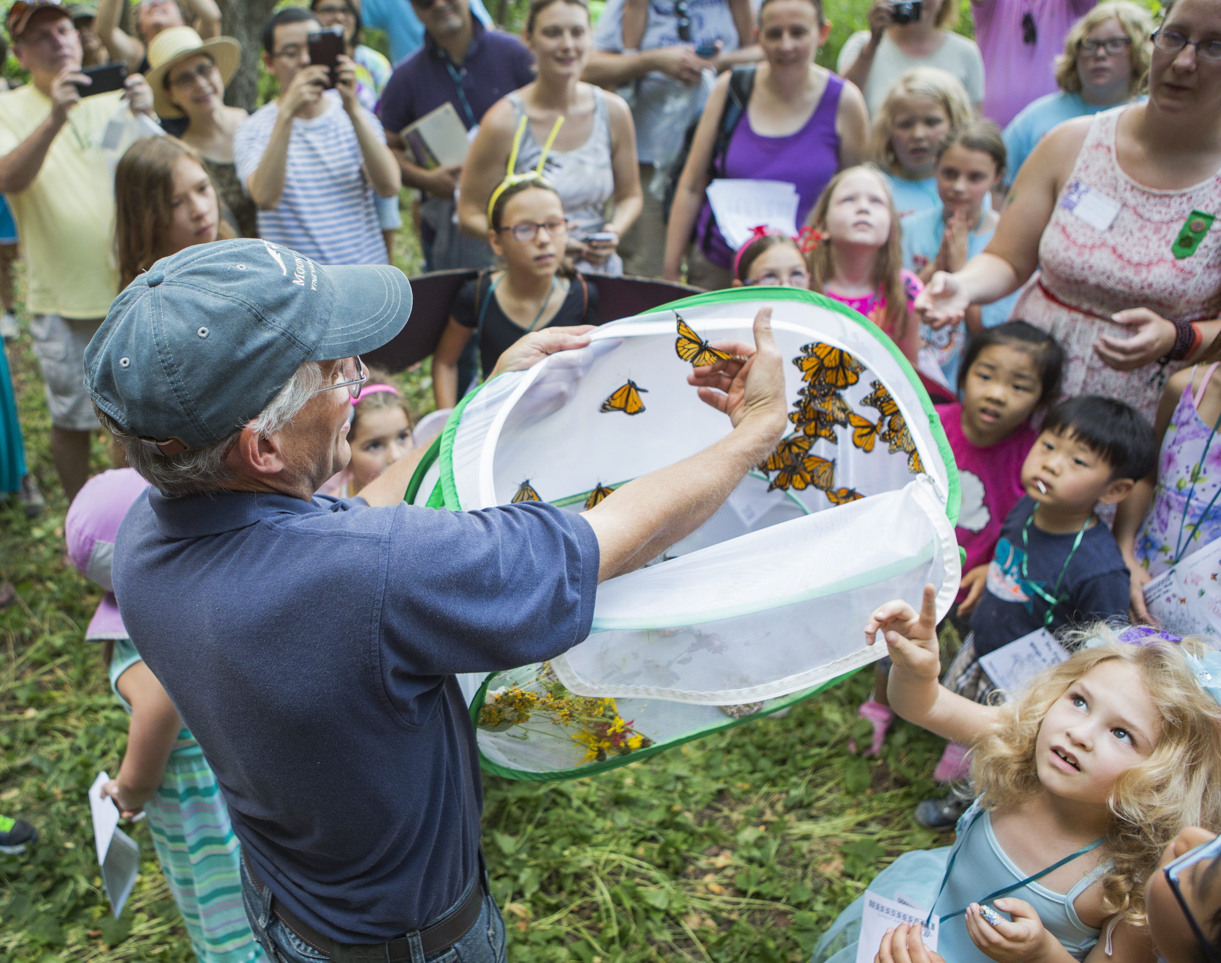 Penn State extension master gardener and community outreach coordinator Doug Ford helps the monarch butterflies from the mesh container during the butterfly release as part of Wings in the Park held at Snetsinger Butterfly Garden in Tom Tudek Memorial Park on Saturday, July 23, 2016.