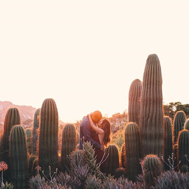 Epic sunset and desert location for Jerry & Jemma's engagement 🌵