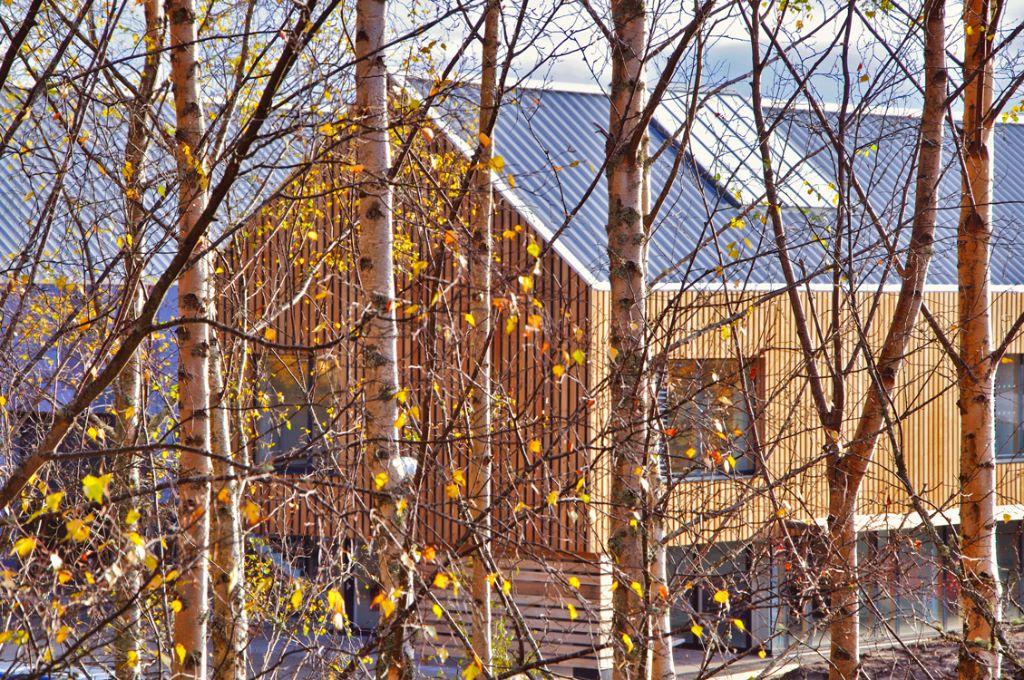 Museum-Store-behind-the-trees.jpg