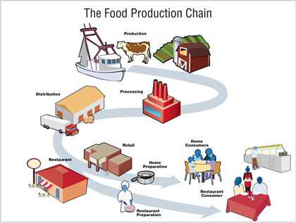 Slika 3. Sljedivost hrane u prehrambenoj industriji. Prikazana je putanja prehrambenog proizvoda od primarne produkcije (e.g. farma, staklenik), preko obrade (eng. processing), pa preko lanca distribucije do potrošača (restorani, trgovine ili individualni potrošač). (Izvor: Remax Products, 2019).