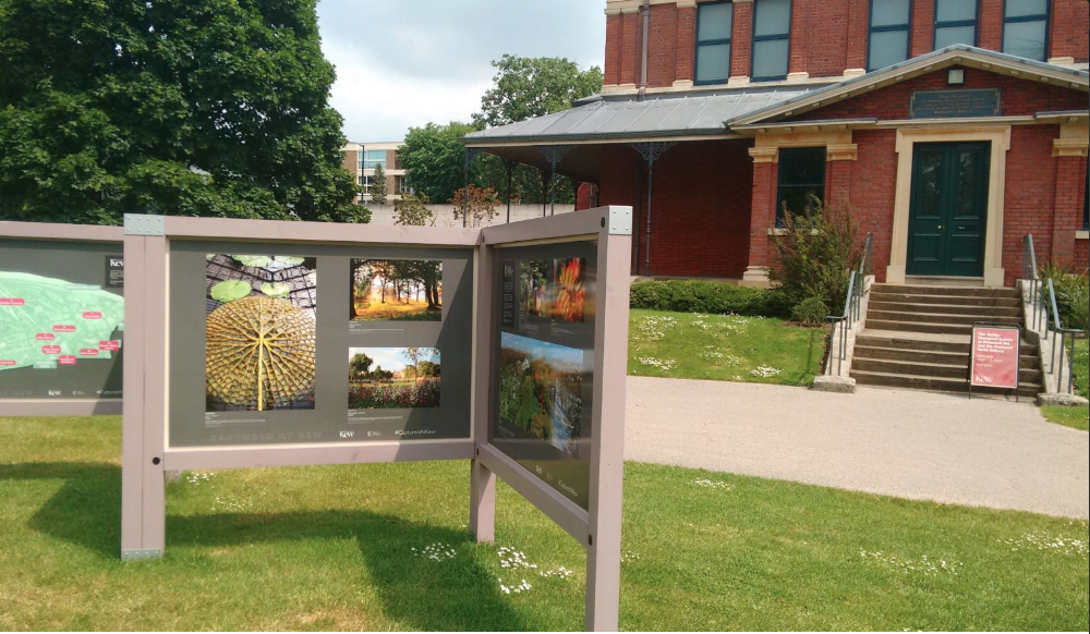 Outdoor Exhibit,  Captured at Kew , Royal Botanic Gardens, Kew, UK (2016).