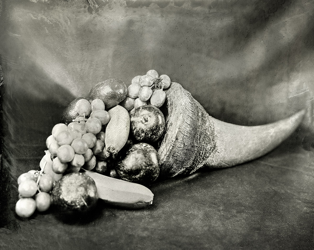 Rhinoceros Horn with Fruit, 2018