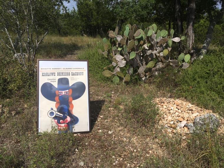 Krolowe dzikiego zachodu Kaktus 2  - small.JPG