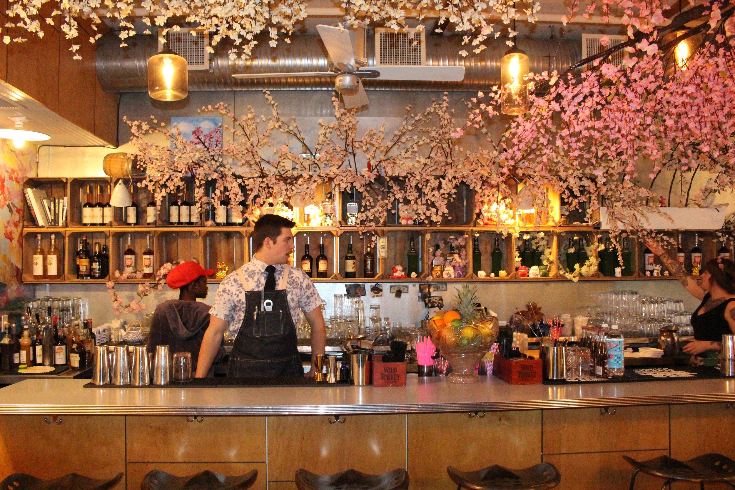 Dc Christmas Pop Up Bar.Dc Cherry Blossom Pub Hangry District