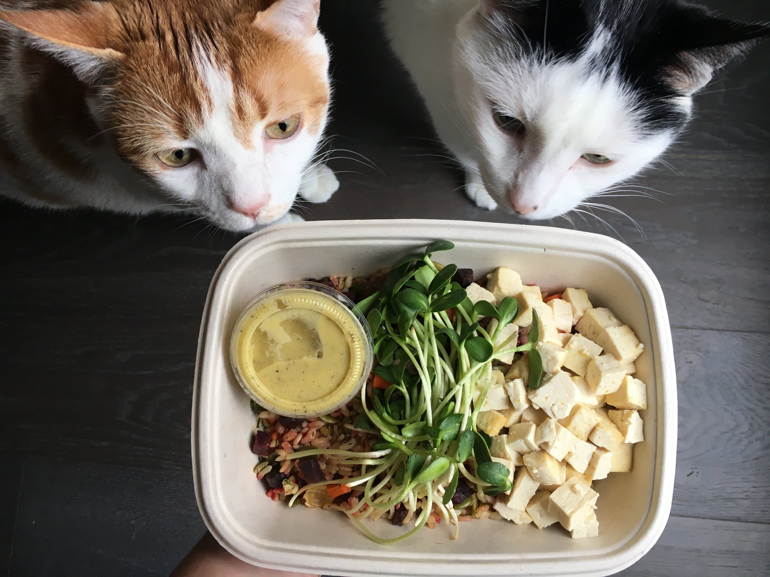 The roasted carrot and beet salad came with delicate, protein-packed tofu and beautiful pea shoots. The toasted brown rice added great texture and left me feeling full and happy.