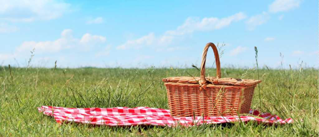 picnic-header-1024x441.jpg