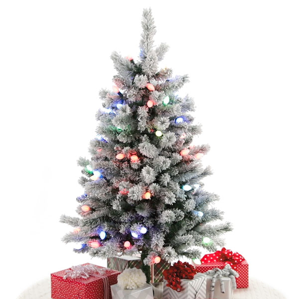 2019 Keepsake Sound a light tree.jpg