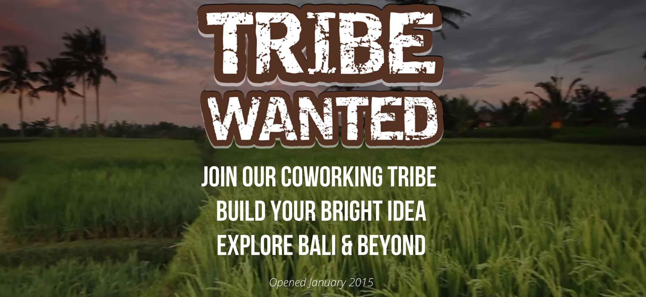 Tribewanted Bali