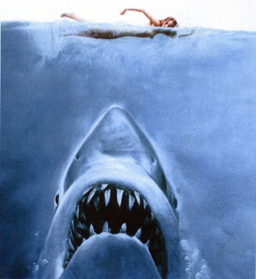 Jaws_Book_1975_Cover.jpg