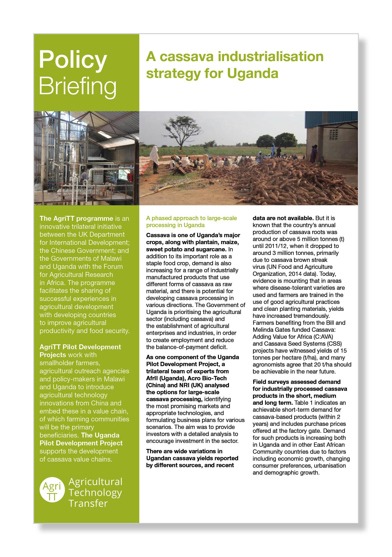 Agritt Industrialising cassava.jpg