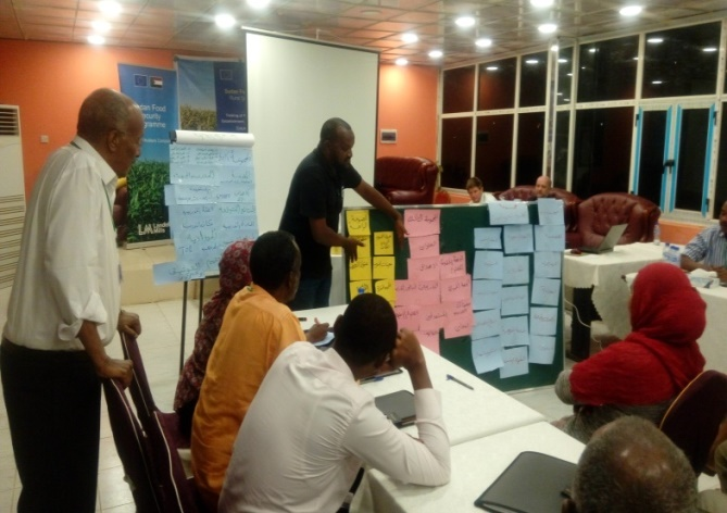 Training facilitator, Mustafa Abukasawi, supervising a group exercise