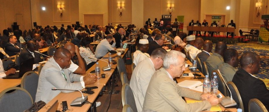 Photo: https://pfbc-cbfp.org/news_en/items/NDjamena-Declaration.html