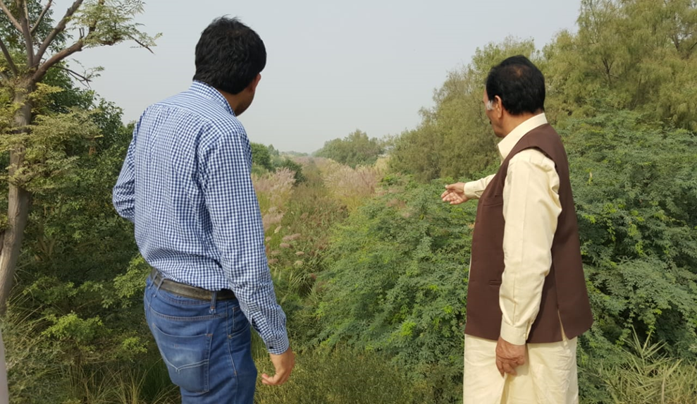 Inspecting the current drainage systems along the bank of the Greater Thal Canal