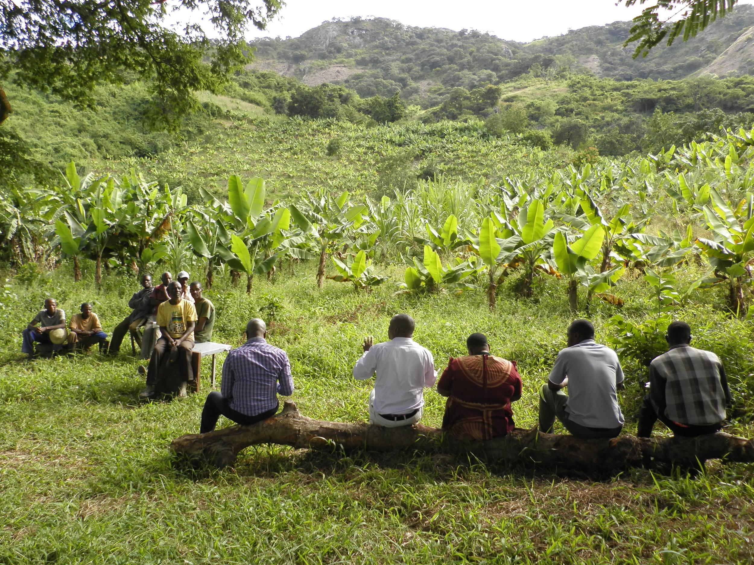 Honde Valley Banana Growers Meeting