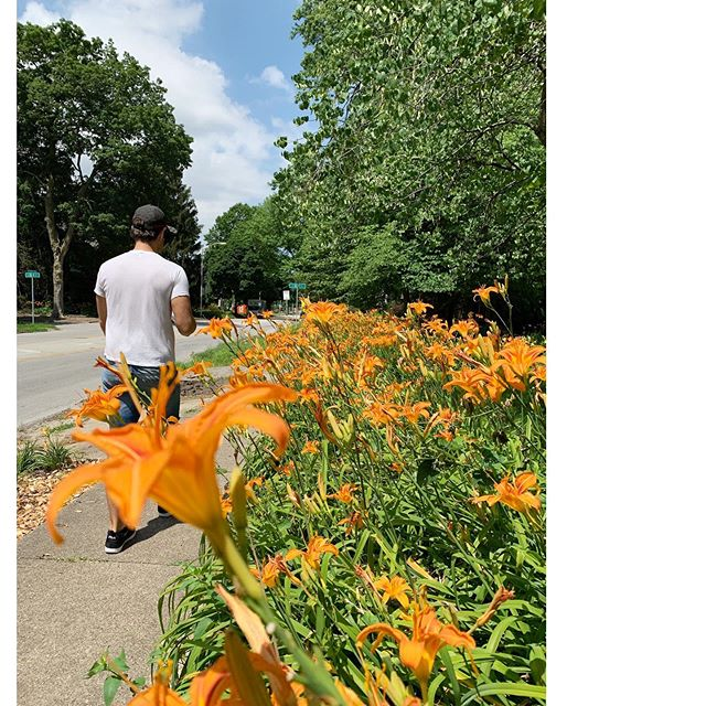 a few weeks ago I was in #champaign Illinois for Peter's wedding celebration. Nathan captured me walking among the flowers memorizing lines. #latergram 📸: @nathanwrite