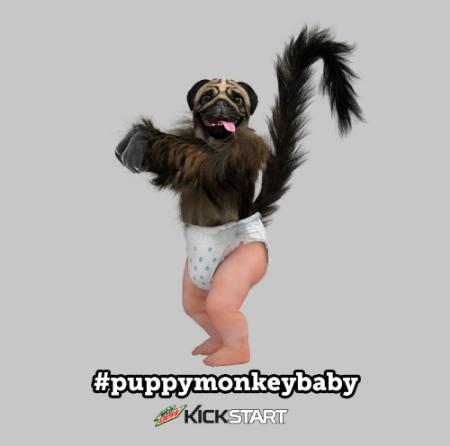 mountain dew kickstart puppymonkeybaby licensing