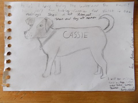 ....... and of course they drew Cassie, who accompanied them everywhere!