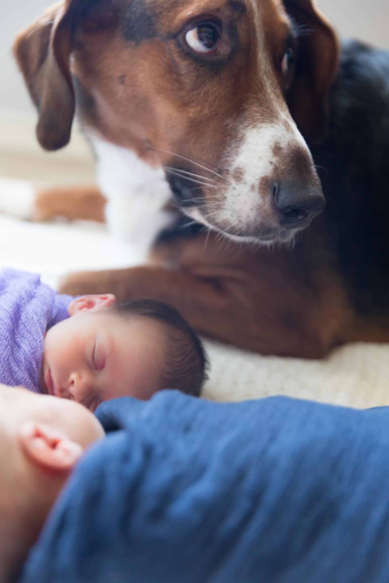 Frisco Newborn Twins-29.jpg