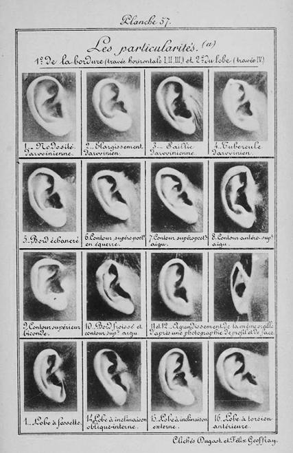 Alphonse Bertillon, plate 57 from  Identification   Anthropométrique , 1893