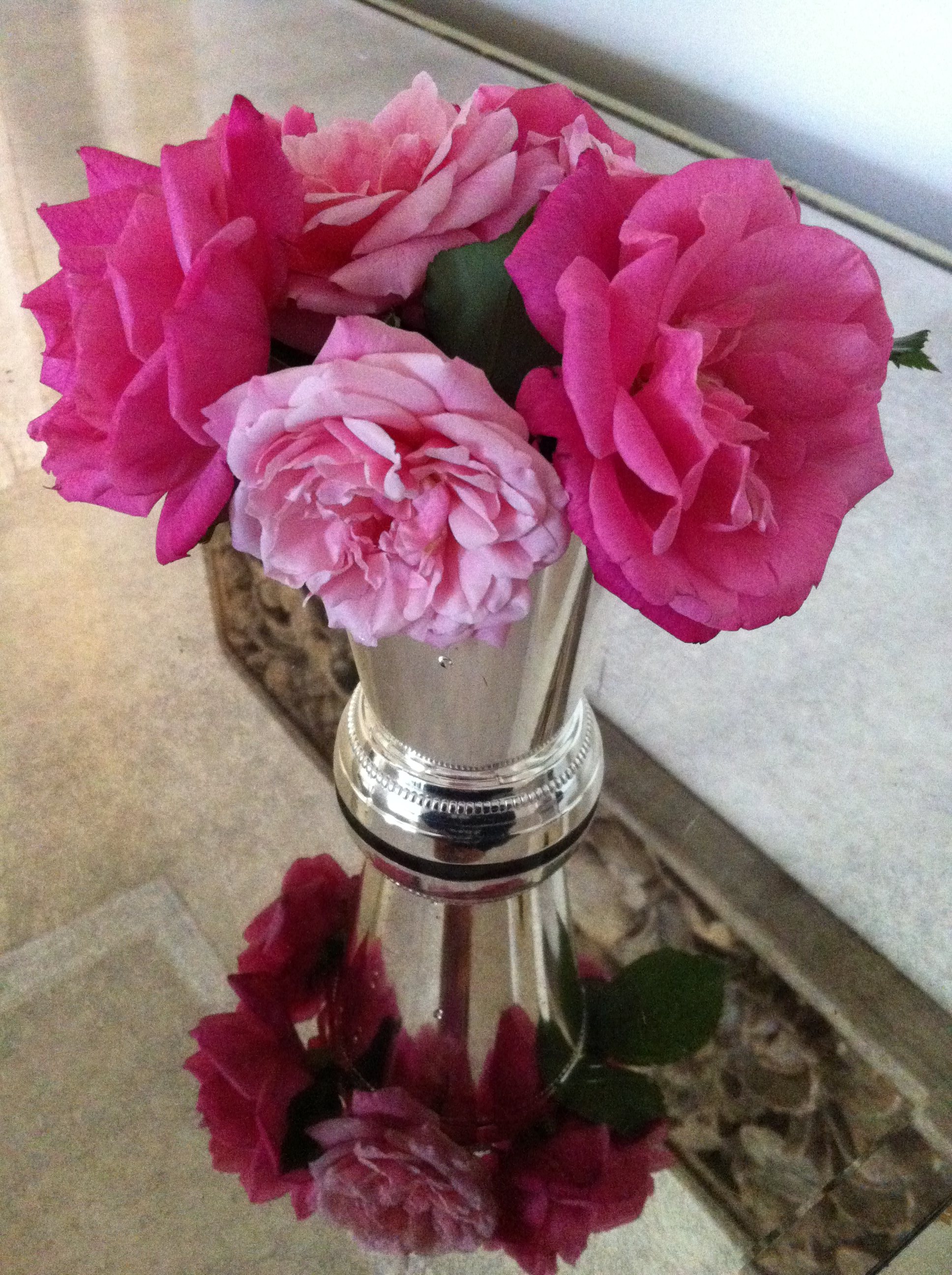 Neighbor's Flowers 01